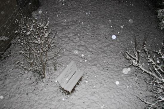 Img 0615 neige metamorphoses