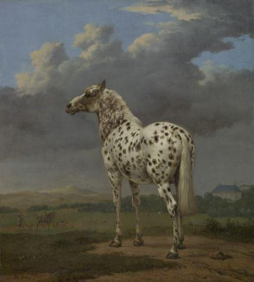 Potter piebald horse