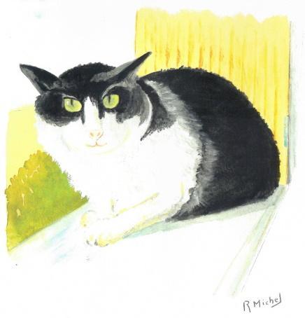 Robert michel dessin chat